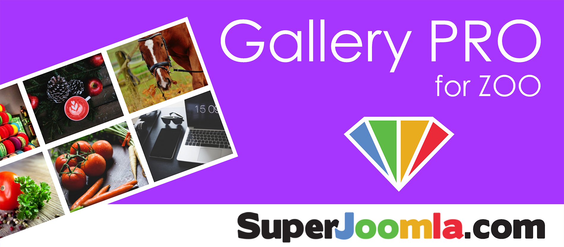 Gallery PRO for ZOO